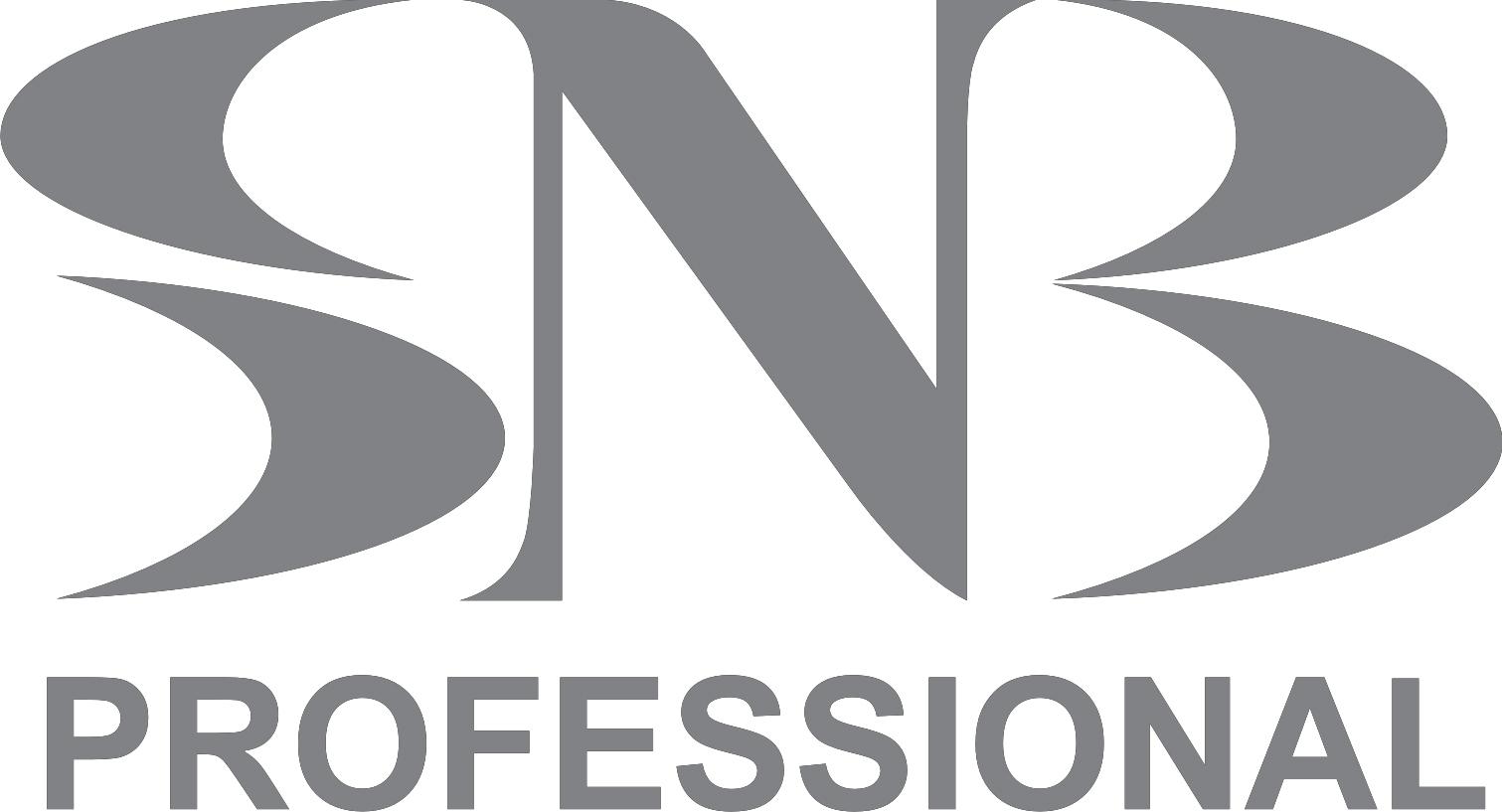 logo-snb-professional